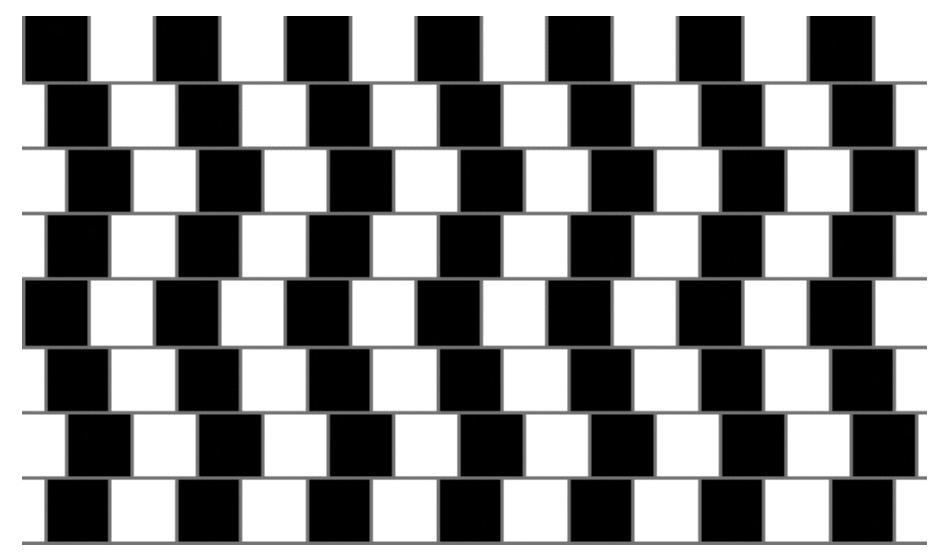 illusion13